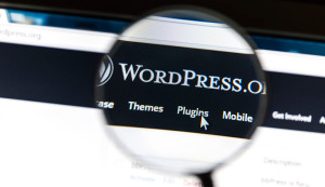 wordpress-platforma